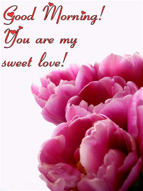 good morning    sweet love pictures