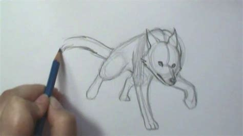 draw motion wolf running youtube
