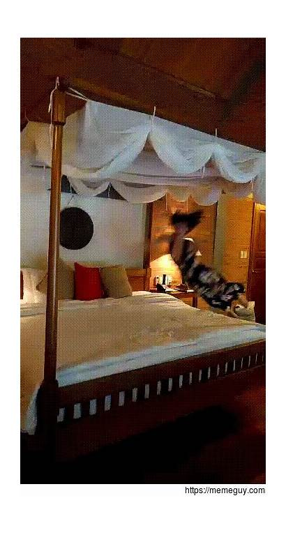 Bed Poster Four Girlfriend Vietnam Jumping Cool