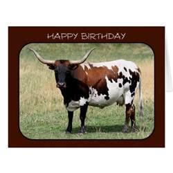 Texas Longhorn Happy Birthday Cards