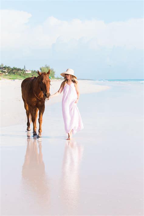 horseback riding  island company  harbour island
