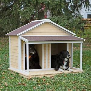 26 best ideas about doggie stuff on pinterest tiny With boomer and george dog house