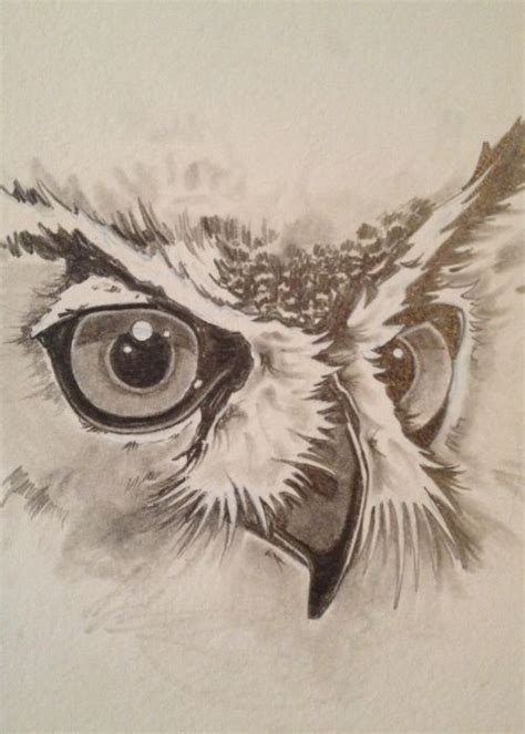 Owl Feather Drawing