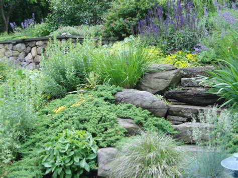 landscaping on a slope landscaping ideas for slopes 2017 2018 best cars reviews