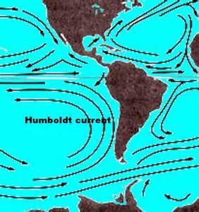 Humboldt Current Map