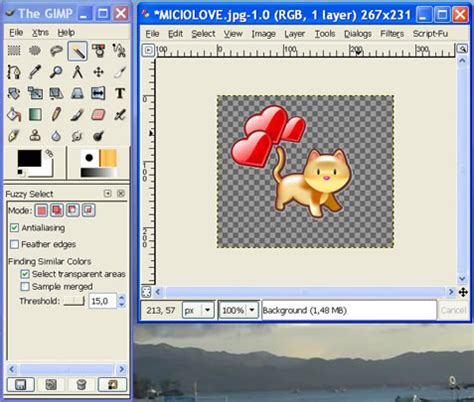 How To Make A Picture A Transparent Background Transparent Image With Gimp