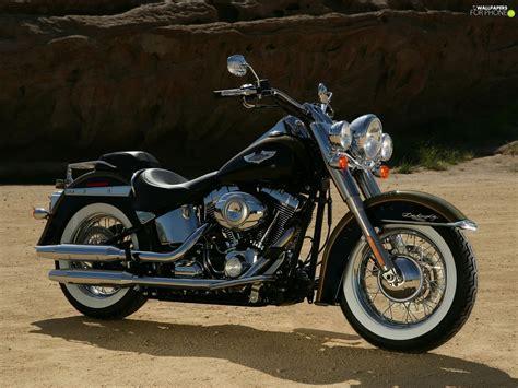 Harley Davidson Boy Wallpapers by Engine Harley Davidson Softail Boy Chrome For