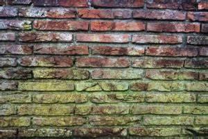 Schimmel An Wand : dampfreiniger f r das bad effektiv nutzen anwendungstipps infos ~ Frokenaadalensverden.com Haus und Dekorationen