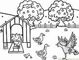 Coloring Farm Pages Hen Printable Clipart Feeding Chicken Henhouse Animal Colouring Library Sheets Farmhouse Chickens Hens Chicks Poule Coloriage Theme sketch template