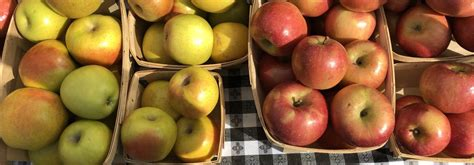 Green Market Recipes: Spicy Apple Sauce and Apple Pecan ...
