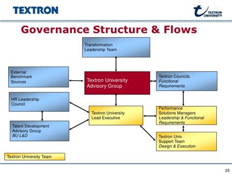 Governance Structure & Flows Transformation