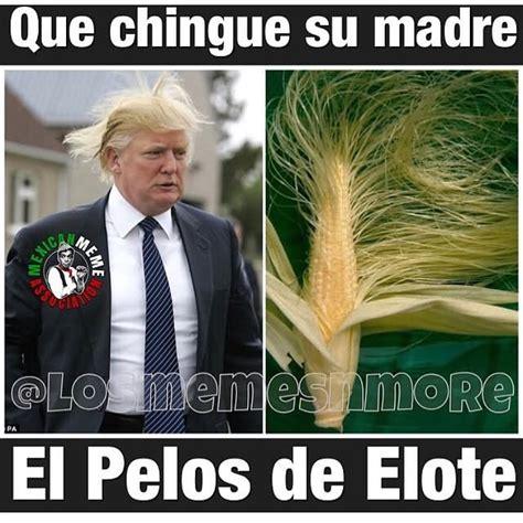 Memes De Trump - 50 funniest donald trump meme images and photos on the internet