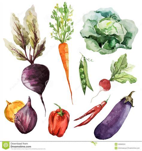 Background Wallpaper Texture Root Vegetables Vegan