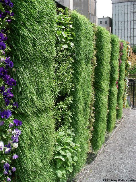 green garden fence gradini verticale pereti verzi idei si solutii 1374