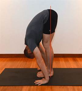 Sun Salutations - Part 3 - The Forward Fold - Yoganatomy