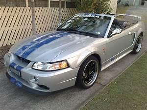 2001 Ford MUSTANG COBRA - 01Cobra - Shannons Club