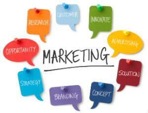 marketing degree bachelor s degree in marketing