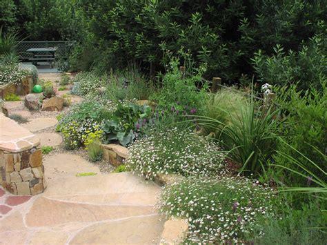 drought tolerant landscape ideas fabulous ideas about