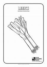 Coloring Leeks Pages Cool Plants Vegetables Activities Asparagus sketch template