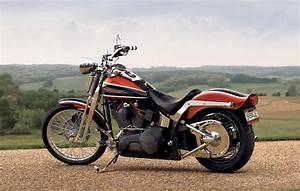 Harley Davidson Fxsts    Fxstsi Springer Softail Service Repair Shop Ma  U2013 The Best Manuals Online