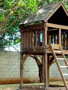 Lessons from the tree house these temporary tents by for Tree house plans without a tree
