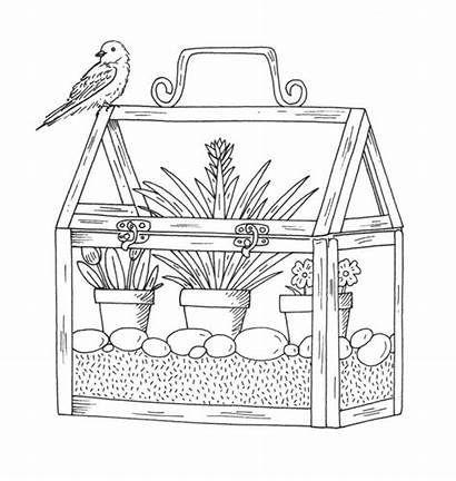 Coloring Pages Greenhouse Penny Adult Rubber Stamps