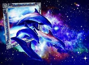 Schöne Delfin Bilder : 337 besten delfine bilder auf pinterest delphine fische und wassertiere ~ Frokenaadalensverden.com Haus und Dekorationen