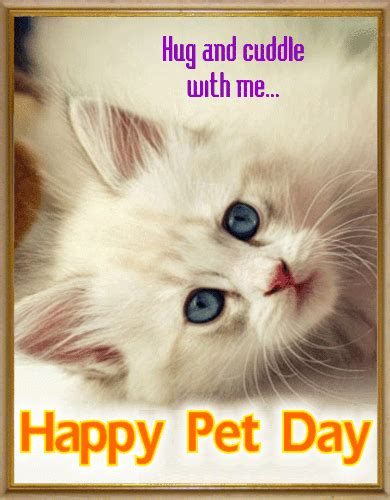 pet day card national pet day ecards greeting cards