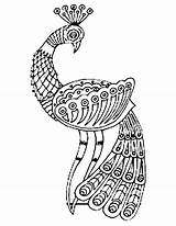 Peacock Drawing Coloring Colour Glamorous Cliparts Indian Getdrawings sketch template