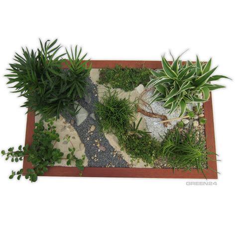 Mini Gärten Gestalten by Minigarten Einen Miniatur Zimmer Garten Gestalten