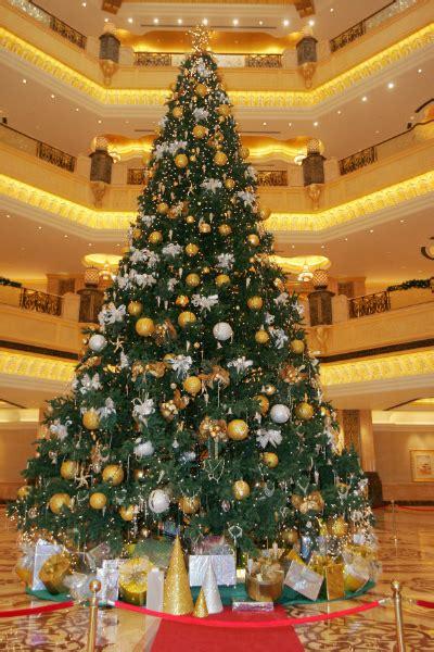 national christmas tree day  terrific tree records