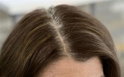 best hair color to cover gray roots 7 pro tips for coloring gray hair from reed