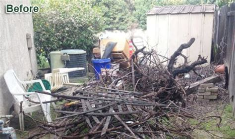 junk tree yard waste removal debris tree wood removal