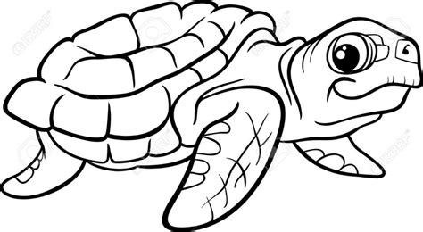 turtle clipart black and white tortoise clipart black and white