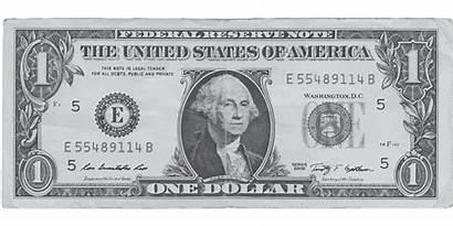 Dollar Money Bank Pixabay Vector Graphic