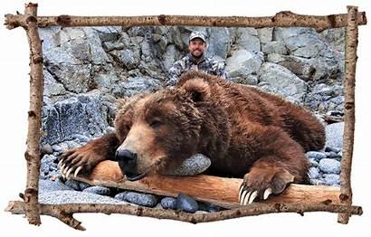 Bear Hunting Kodiak Brown Hunters Alaska Hunt