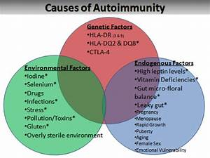 Causes and Treatments of Hashimoto's Thyroid Autoimmunity ...