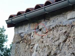 Nid De Guepe Dans Le Sol : nid de gu pes sous toiture acc s int rieur ~ Dailycaller-alerts.com Idées de Décoration