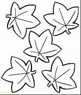 Coloring Oak Leaves Printable Leaf Getcolorings Fall sketch template