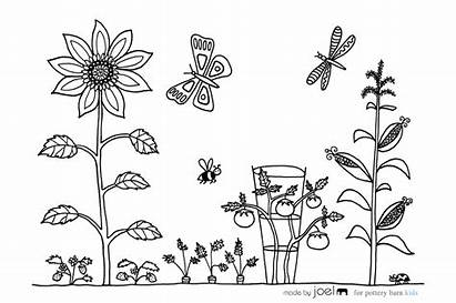 Coloring Garden Vegetable Sheet Gardening Pages Joel