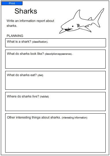 A Report About Sharks, English Skills Online, Interactive Activity Lessons