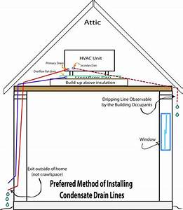 Home Ac Drain Line Diagram  Home  Free Engine Image For User Manual Download