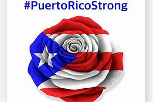 Fundraiser by D Mary Scott : Puerto Rico se Levanta