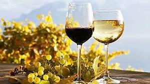 Wine Tasting Workshop for Two at West Street Vineyard ...
