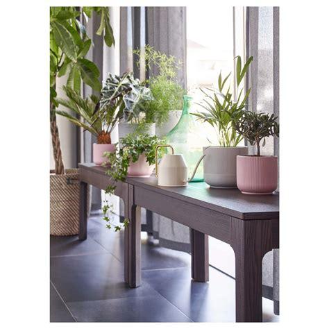 ikea vasi piante ikea vasi e piante