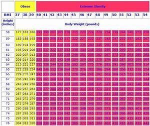 Normal Weight Body Mass Index Women Health Info Blog