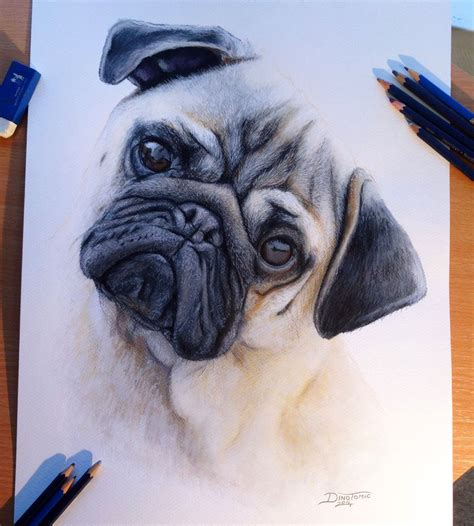 beautiful color pencil drawings  top artists