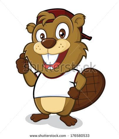 beavers  pinterest