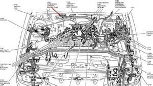 1995 Explorer Xlt 4 0 The Fuel Pump Continuously Primes