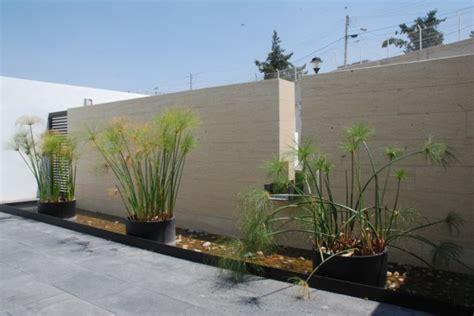 garden design  minimalist house  ideas